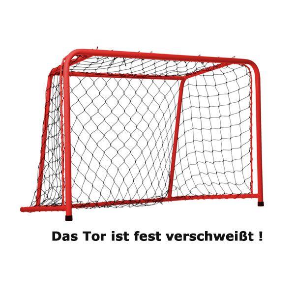 Floorball Tor 90 x 60 cm
