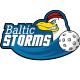 Floorball-Baltic-Storms-Logo-mini